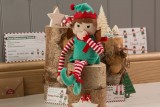 An Elf For Christmas Girl - Toy Only