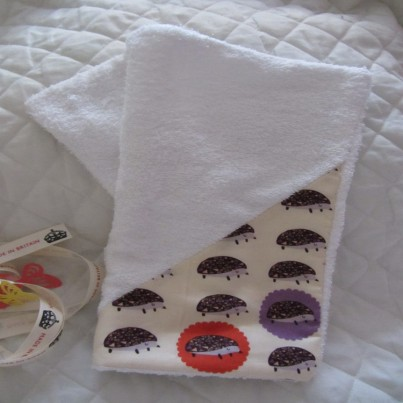 Hello Hedgehog Bandana bib, cloth and was mit set. Makes great gift