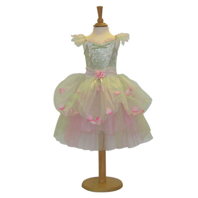 Apple Blossom Fairy Costume