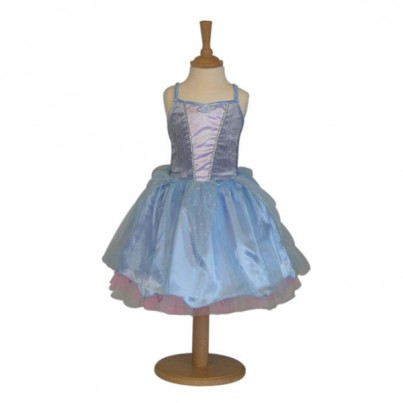 Reversible Summer/Winter 2 in 1 Fairy Costume