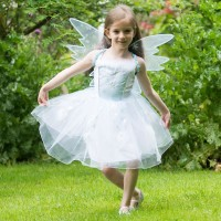 Frozen Fairy Costume
