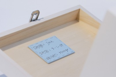 Inside Plaque  to inscribe a message an individual message/memory