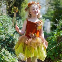 Autumn Fairy Dress